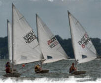 NERYC Junior sailors racing Lasers